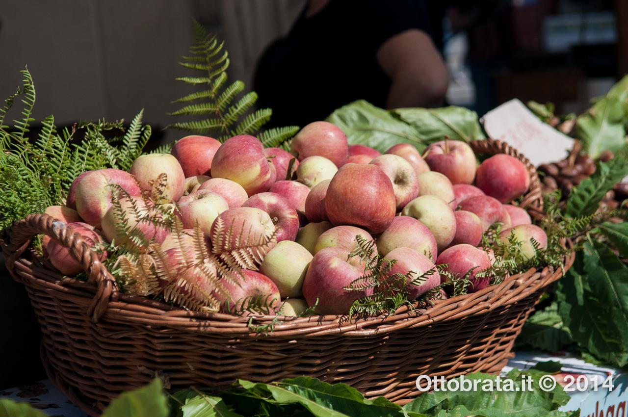 Un bel cesto di mele (dal sito Ottobrata.it)